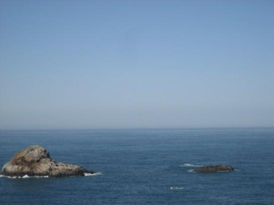 Trinidad, CA: We could HEAR seals on those rocks but we couldn't see them... they were probably on the other s
