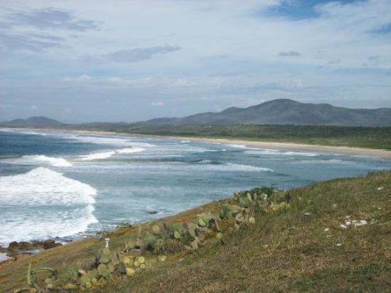 Noblesville, IN: Playa Penitas