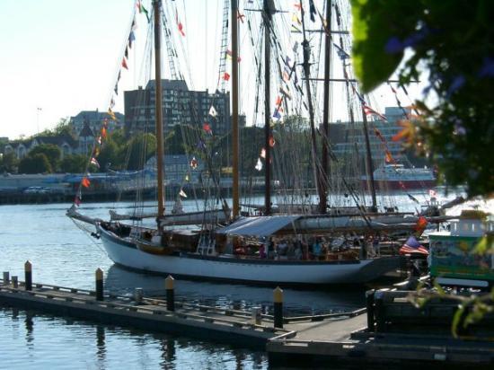 Sailing ships in Victoria BC