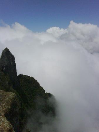 Saint-Denis, Réunion: Au-dessus des nuages, Piton Maïdo (2 200 mètres)