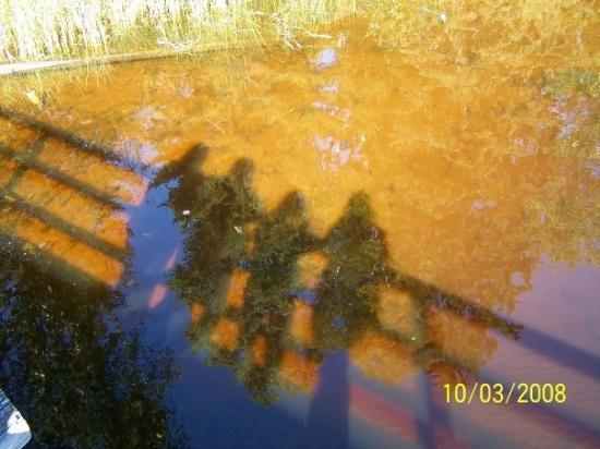 La Pointe, WI: Our shadows from the Town Park