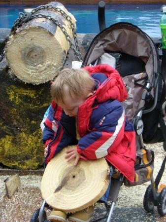 Ketchikan, AK: Spencie at the Lumberjack Show