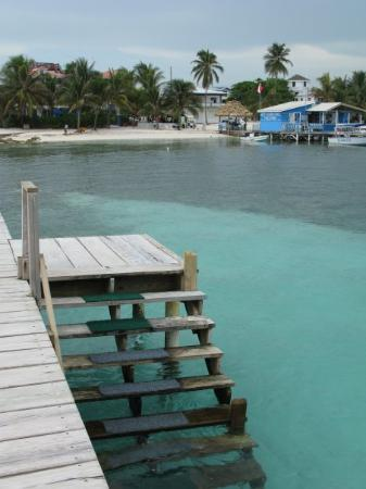 San Pedro, Belize: Locals call our dock the Blue Steps they love to swim here!