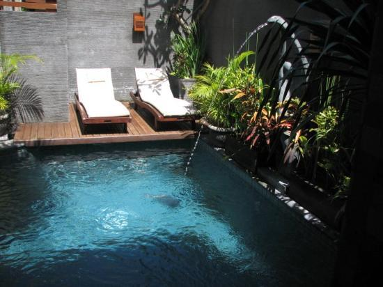 The Bali Dream Villa Seminyak: our pool.. it was heavenly :-)