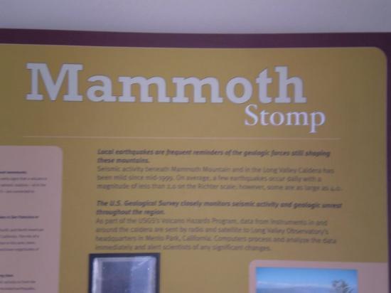 Bilde fra Mammoth Lakes
