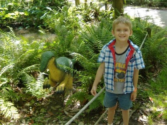 New Port Richey, FL: Corey at Dino World