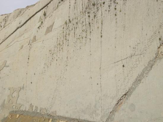 Sucre, Bolivia: Yacimiento de huellas fosilizadas más grande del mundo. 5.000 pisadas correspondientes a 294 an