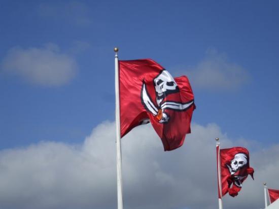 Raymond James Stadium: some flags