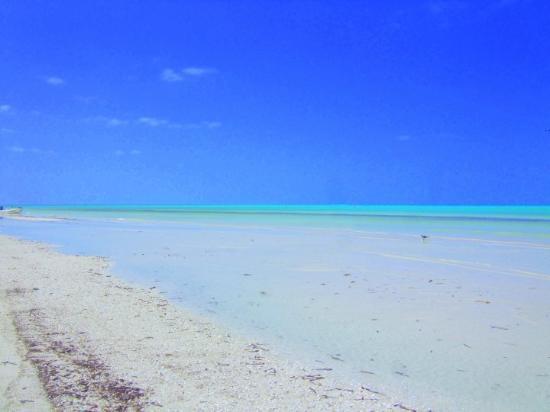 Holbox Island, Mexico: Holbox