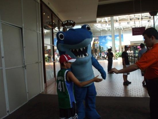 Mall of America: Isaiah hugging Sharky from the Aquarium