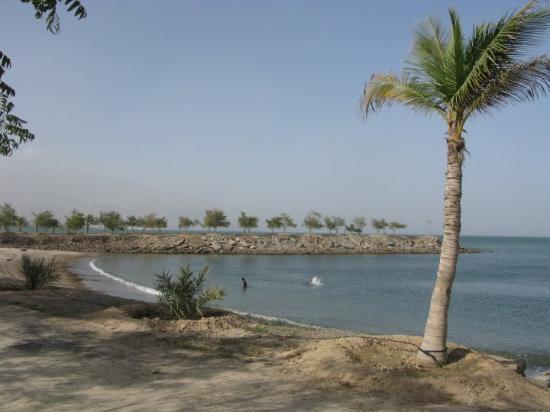 Fujairah, De forente arabiske emirater: 海邊有人游泳