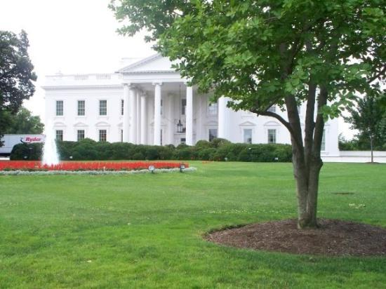 DC by Foot: White House