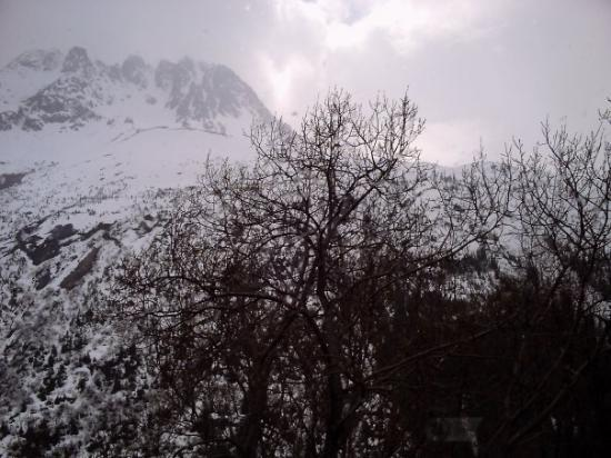 View from the train ride in Skagway