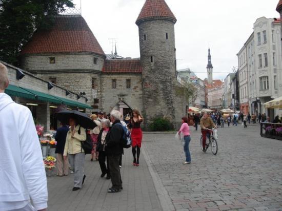 Bymuren: Castle wall in Tallin.