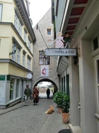 Erfurt, Tyskland: @Klämmer Brücke