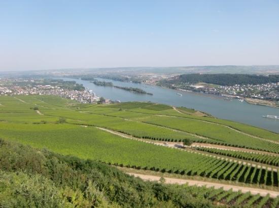 Ruedesheim am Rhein, Tyskland: August 2009 (Rüdesheim)