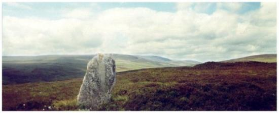 Wick, UK: Lone menhir on hillside way north Scotland.