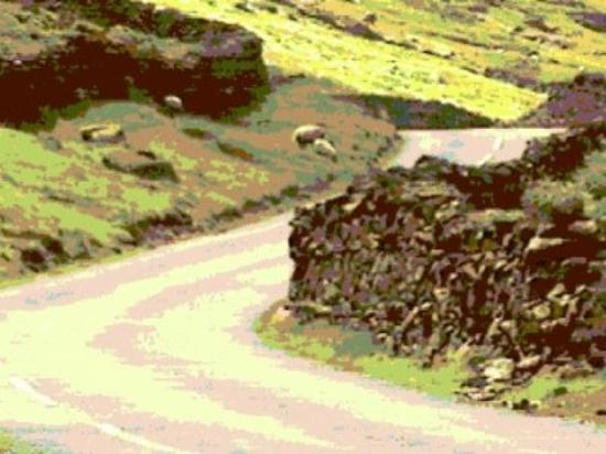 Ambleside, UK: sheep along Kirkstone Pass...why are the stonewalls necesary??