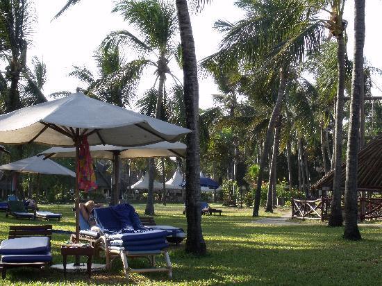 Voyager Beach Resort: Hotel grounds