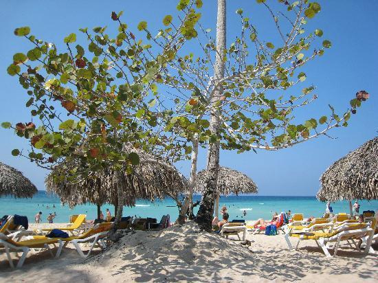 Iberostar Hacienda Dominicus: Hacienda Hotel beach