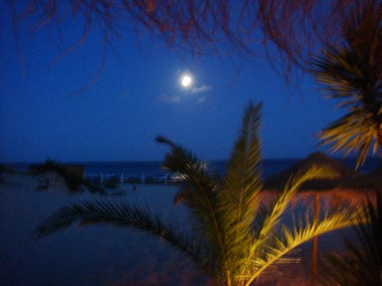 Pezinhos N'Areia: Night