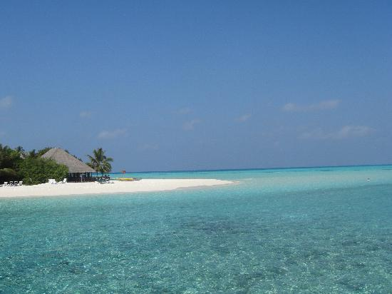 Meeru Island Resort & Spa: View from the deck of our JWV