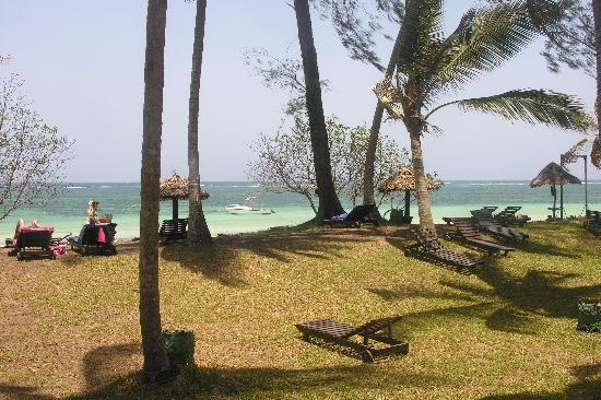 Diani Sea Resort: A view from the gardens