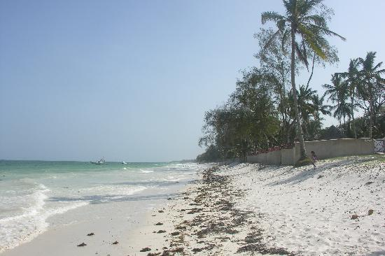 Diani Sea Resort: 90 degrees sunny and soft white sand