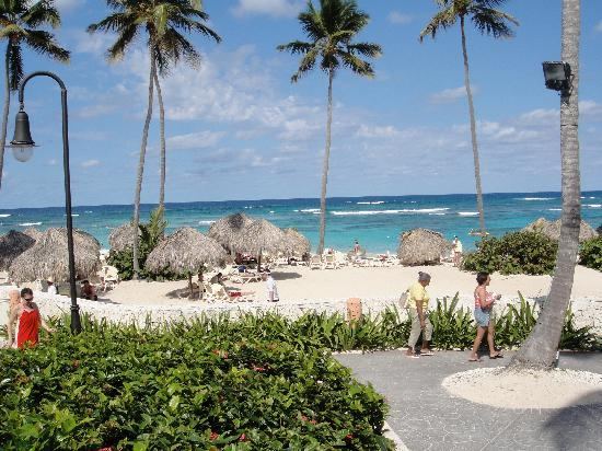 Majestic Elegance Punta Cana: View from one of the restaurants
