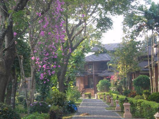 Tao Garden Health Spa & Resort: peaceful garden