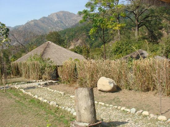 Hotel Tiger Camp: Ideal location and breathtaking scenery