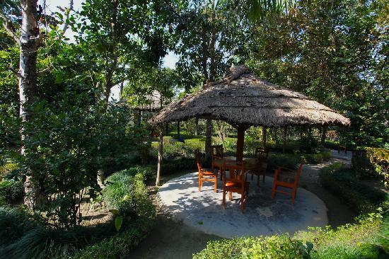 Forest Hideaway Hotel & Cottages: The sit-out at the Forest Hideaway. You can spend hours here.