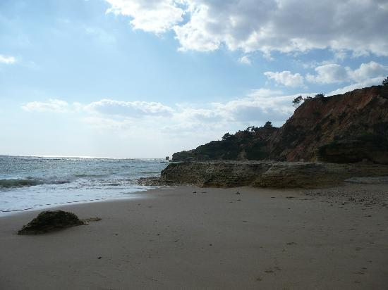 TUI BLUE Falesia: beach