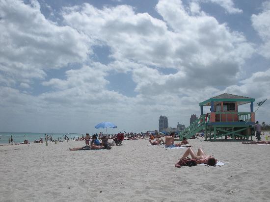 The President Hotel - Miami Beach: Spiaggia (di fronte all'hotel 50m)