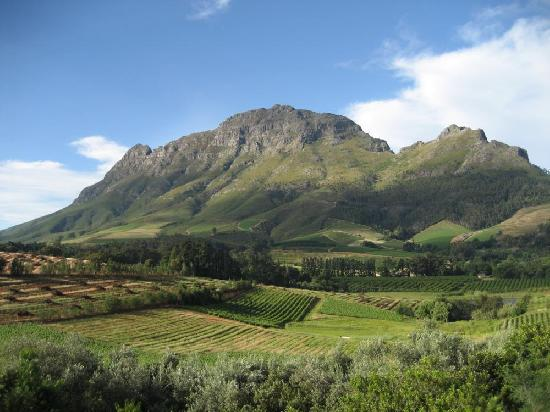 Cape Wine and Leisure Tours: Simonsberg Mountain, Stellenbosch
