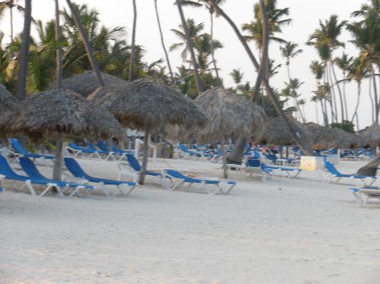 VIK Hotel Cayena Beach: Cayena Beach