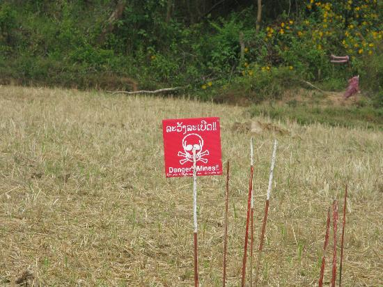 Uxo Lao: Entrance to the rice field
