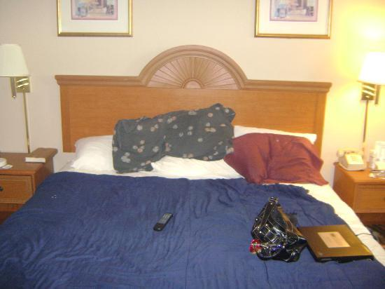 Ramada West Atlantic City: Bed (please excuse my pillows and stuff)
