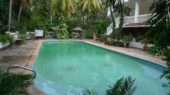 Le Plaza Hotel: poolside