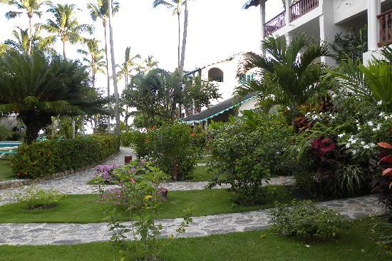 Hotel Residence Playa Colibri: il giardino dell'hotel
