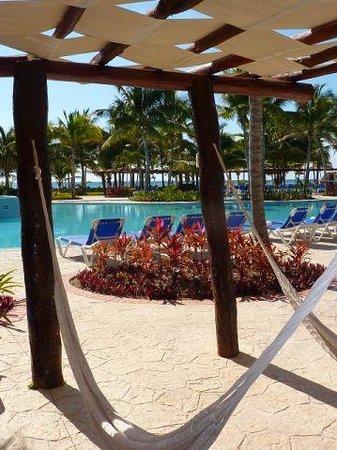 Barcelo Maya Beach: Poolside Hammocks