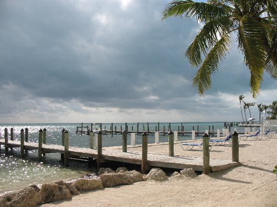 Pines and Palms Resort: The beach & pier