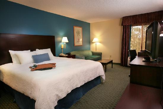 Hampton Inn Jacksonville/Ponte Vedra Beach-Mayo Clinic Area: King Room