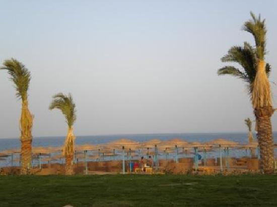 The Three Corners Sunny Beach Resort: Beach