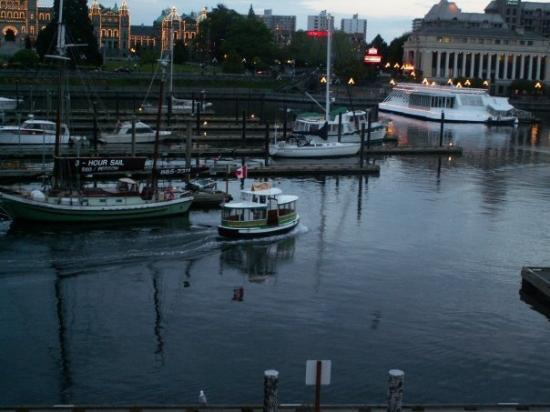 Inner Harbour: Dinky Boats