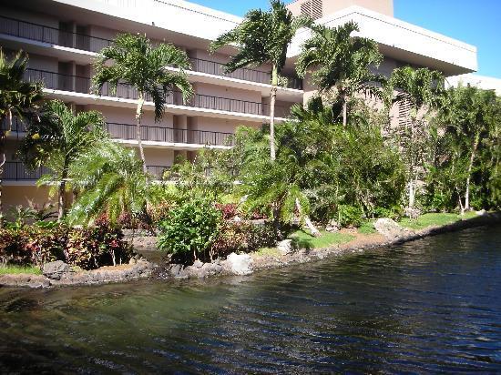 Hilton Waikoloa Village: The Lagoon Tower