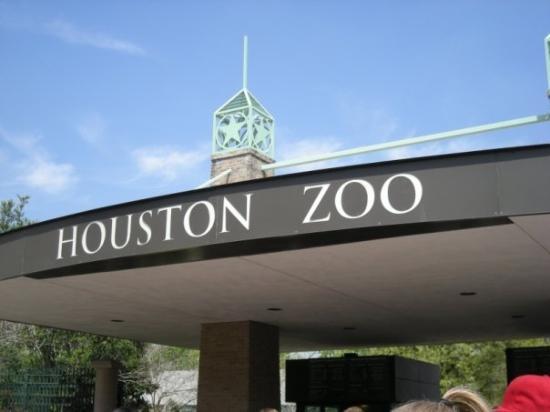 Houston Zoo  Houston, TX Photo by Stephen Spriggs