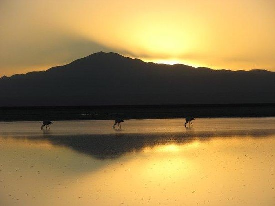 San Pedro de Atacama, Chile: Salar de Atacama