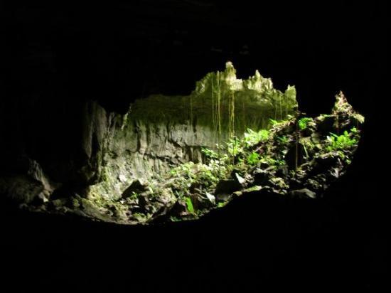 Lang's Cave, Gunung Mulu National Park, Sarawak, Borneo