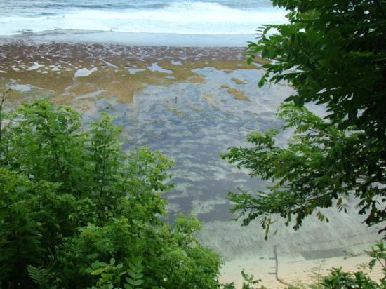 Nusa Dua Beach: To the hidden spot beach in Nusa Dua.
